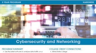 Cybersecurity and Networking Flyer