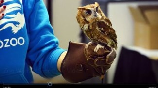Zoo Wildlife and Conservation Careers (New Visions) Video
